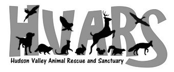 Hudson valley animal rescue and sanctuary ny